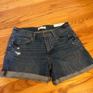 Ann Taylor LOFT distressed shorts